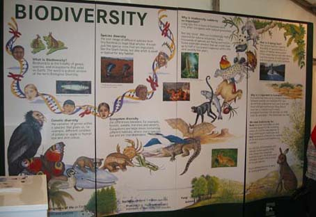 Biodiversity Display Panel for Environment Service