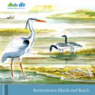 Booterstown Biodiversity Education Pack front cover