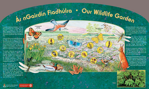 Sign for Biodiversity Garden at National School in Co Mayo